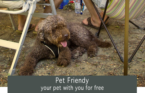 Your pal with you for free